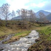 Реки Алтая 31